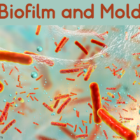 Biofilm and Mold