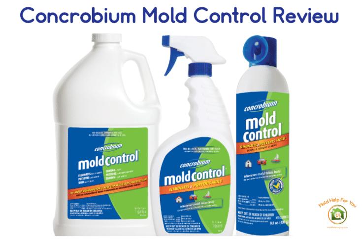 Concrobium Mold Control Review
