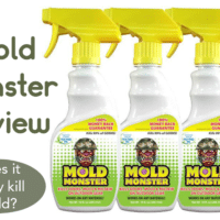 Mold Monster Review