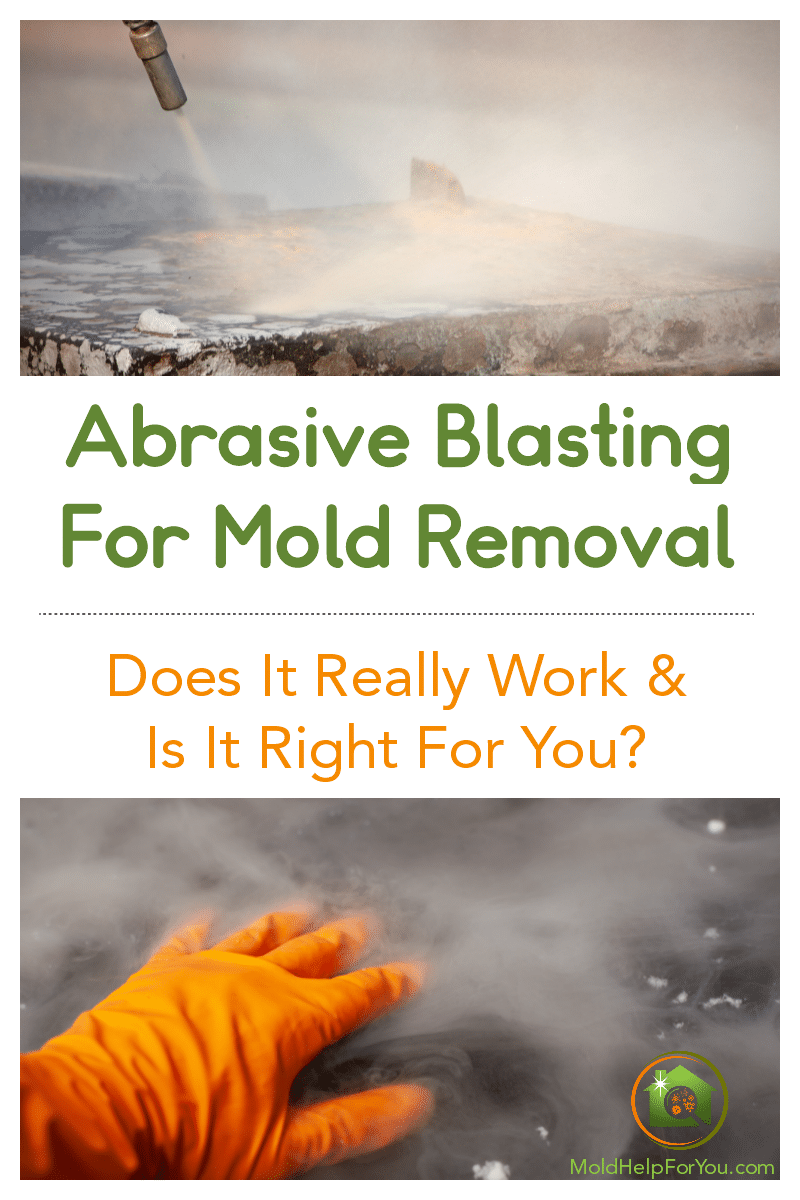 Abrasive blasting for mold removal on a concrete slab