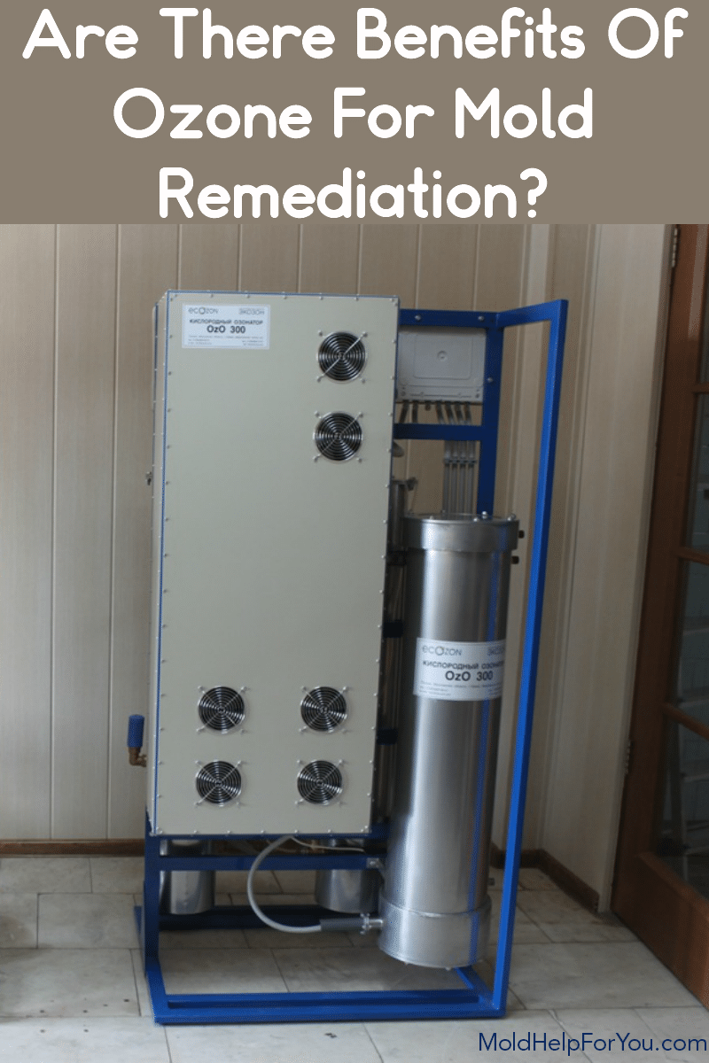 Ozone generator for mold removal