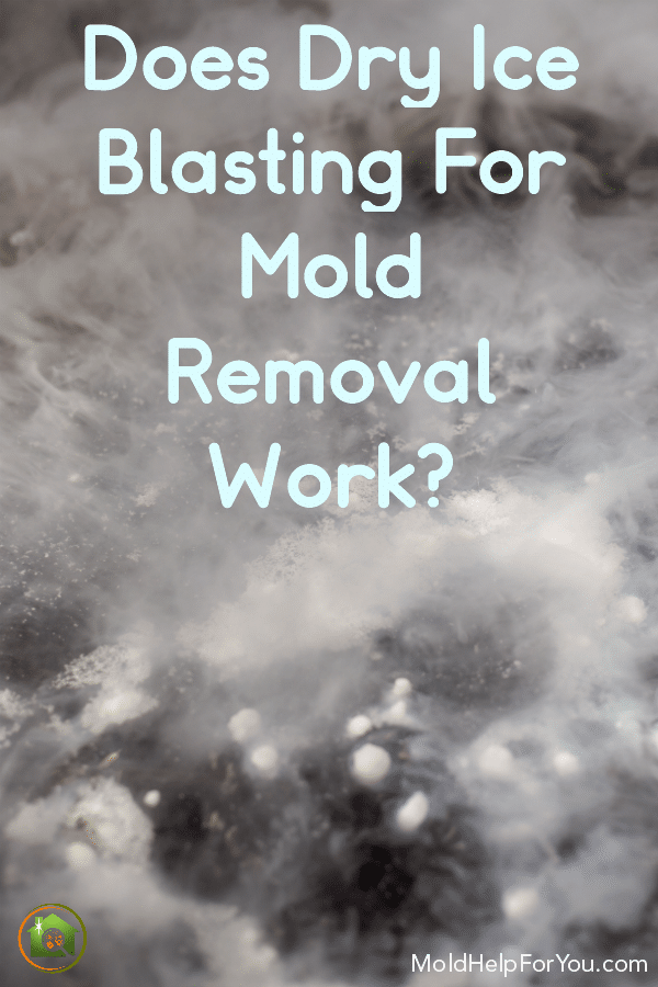 Dry ice blasting for mold removal