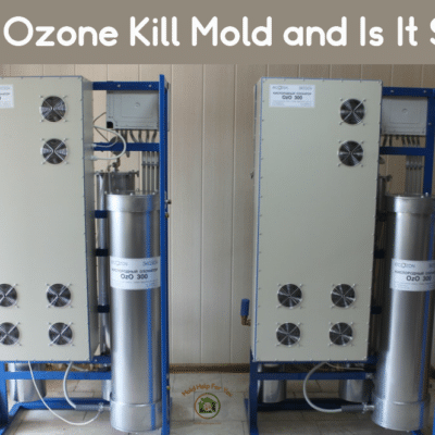 Does Ozone Kill Mold and Is It Safe?