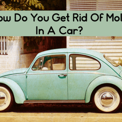 How Do You Get Rid Of Mold In A Car?