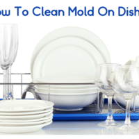 How To Clean Mold On Dishes