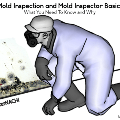 Mold Inspection & Mold Inspector Basics – What You Need To Know & Why