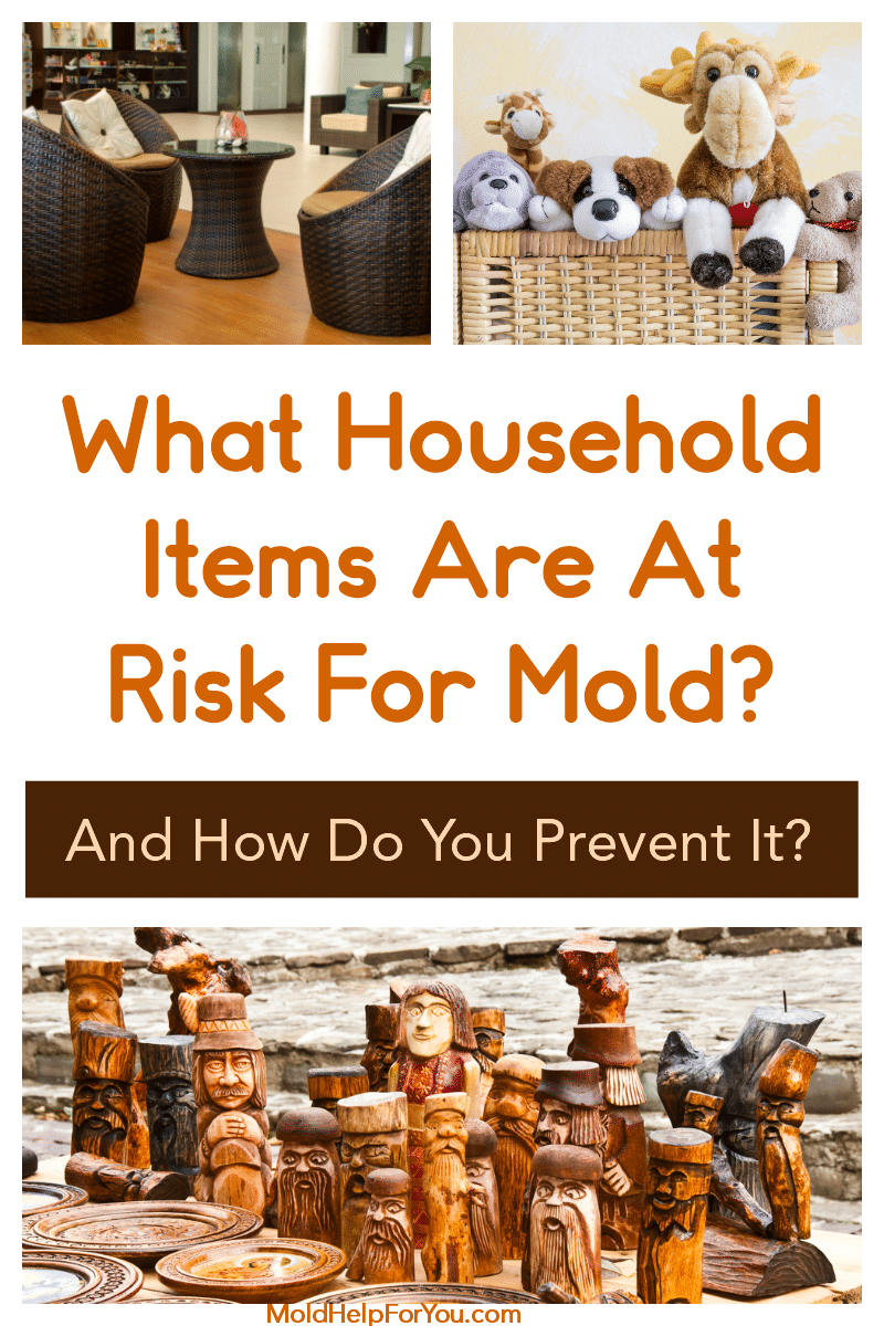 Household items that are at risk for mold growth