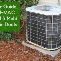 Your Guide To HVAC Mold & Mold In Air Ducts