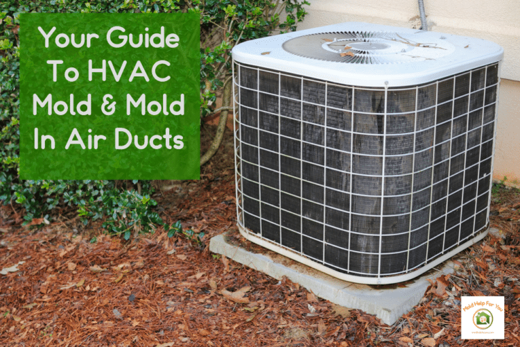 A mold free HVAC unit with the words HVAC Mold next to it