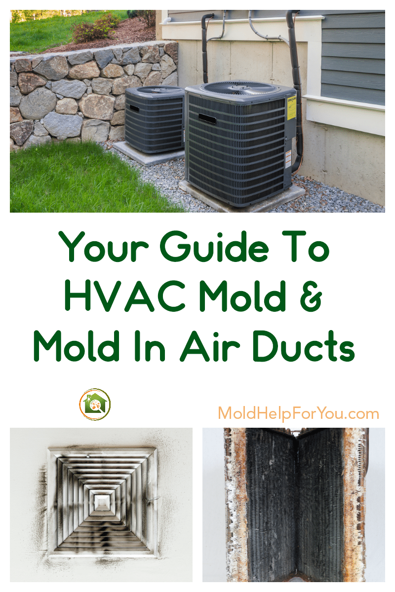 HVAC mold and mold in air vent