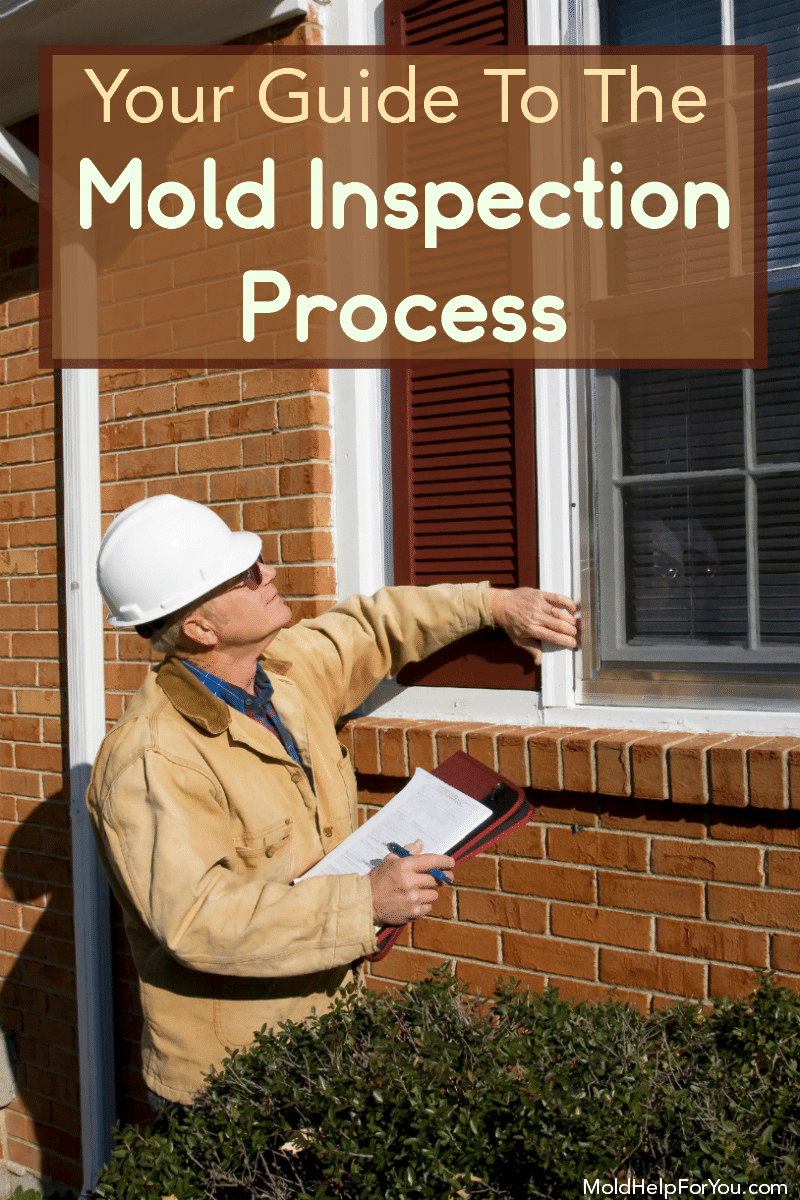 A mold inspector performing a mold inspection on the exterior of a home