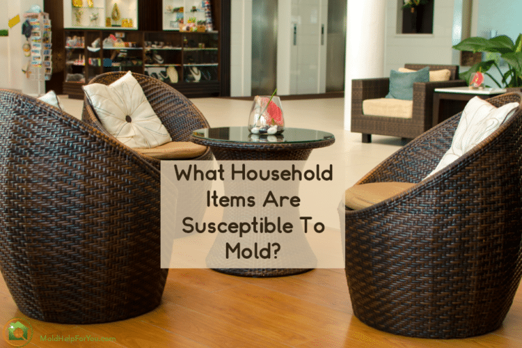 Household items that are susceptible