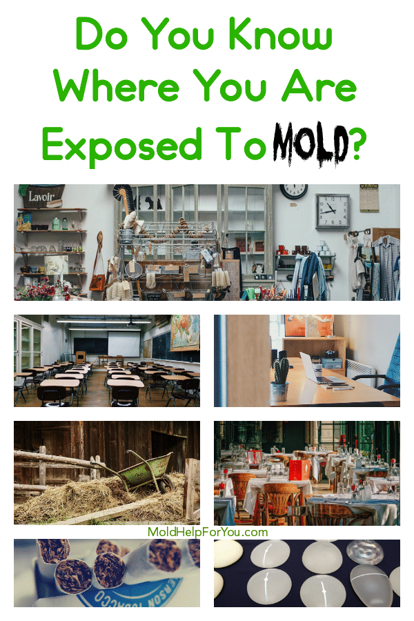 Various placed where you are exposed to mold