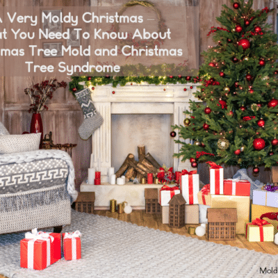 What You Need To Know About Christmas Tree Mold and Christmas Tree Syndrome