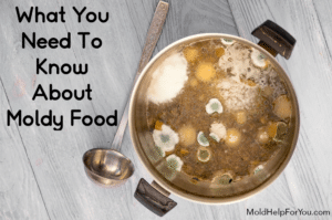 """A stainless steel pot of soup with mold growing on the top. A ladel lies next to the pot. There is a caption reading """"what you need to know about moldy food."""""""