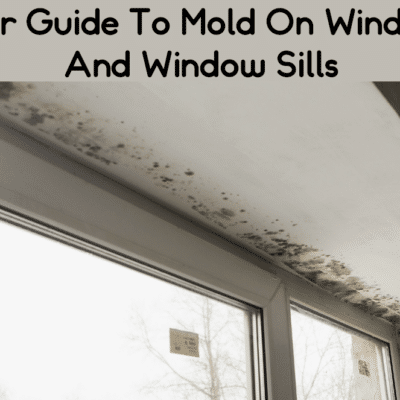 Your Guide To Mold On Windows And Window Sills