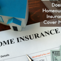 Does Homeowner's Insurance Cover Mold?