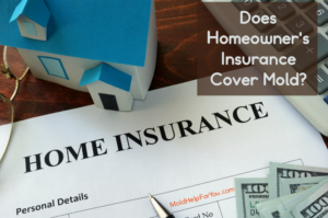 """A paper house next to a homeowner's insurance policy with the caption """"does homeowner's insurance cover mold?"""""""