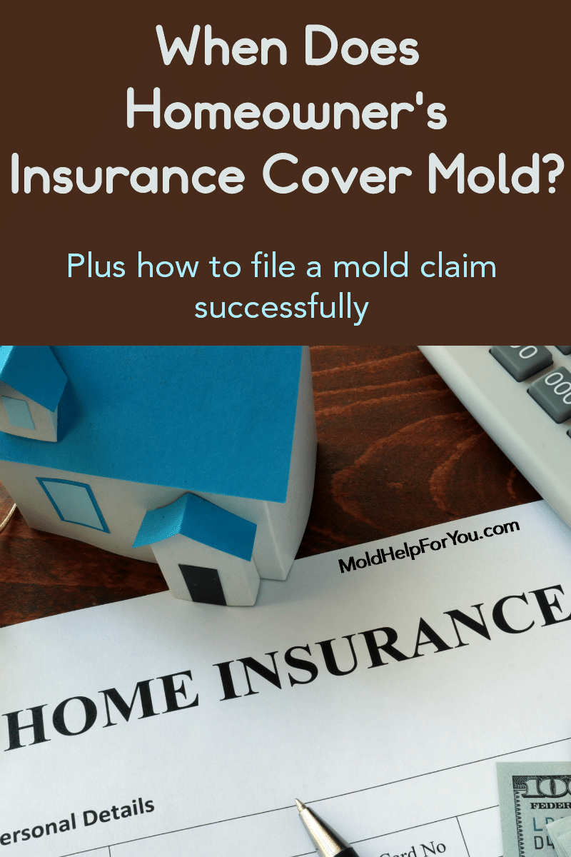 "A paper house next to a homeowner's insurance policy with the caption ""does homeowner's insurance cover mold?"""