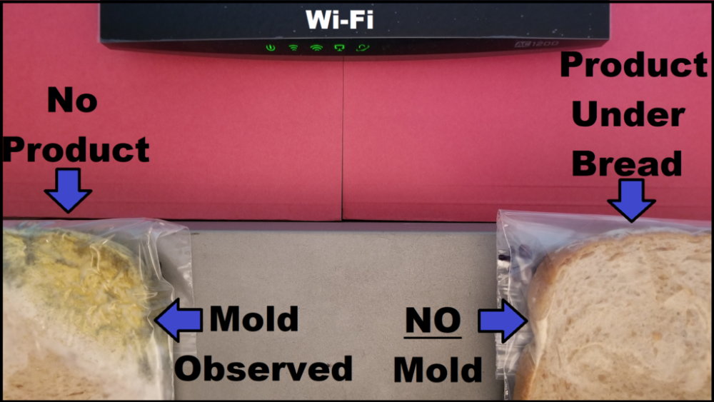 bread experiment results from EMF Solutions. Looking at mold and EMFs.