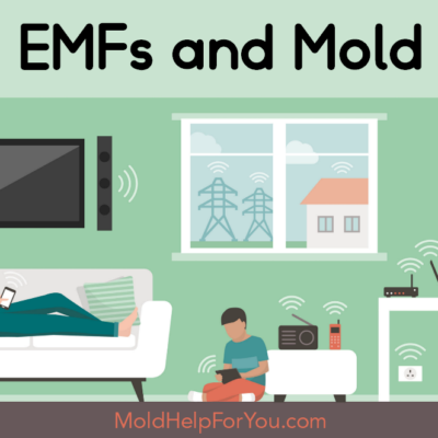 Mold and EMFs + 5G – What You Don't Know Will Hurt You