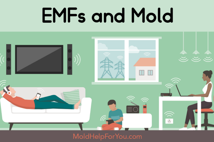 An illustration showing all the EMFs being released from electronic devices in our homes