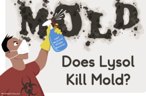 A cartoon drawing of a man with a mold respirator spraying Lysol mold and mildew remover on a moldy wall