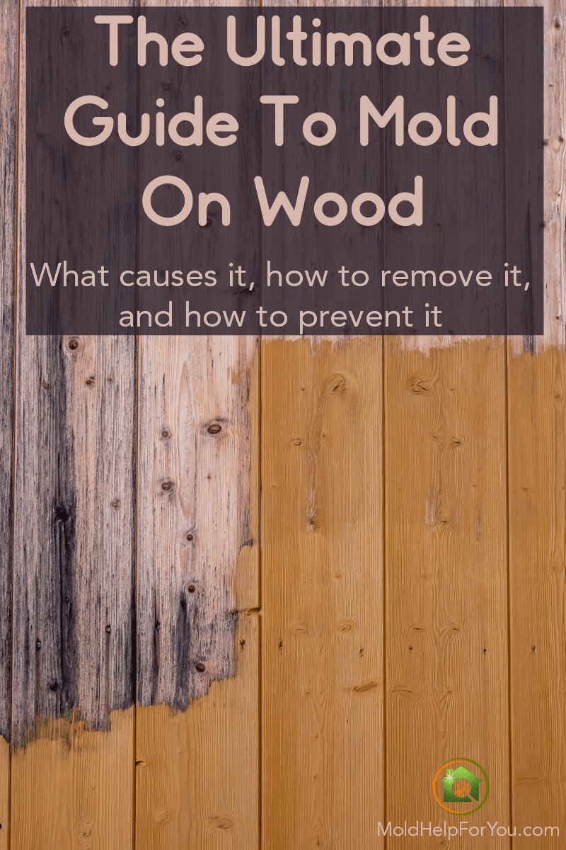 "A split wood floor. One side has mold on wood and the other does not. Caption reads ""The Ultimate Guide To Mold On Wood."""