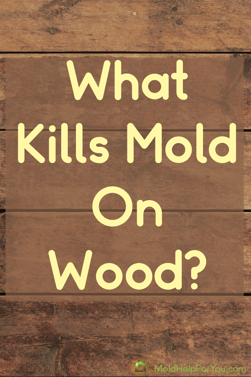 "Wood paneling with the words ""what kills mold on wood"" written in white lettering"