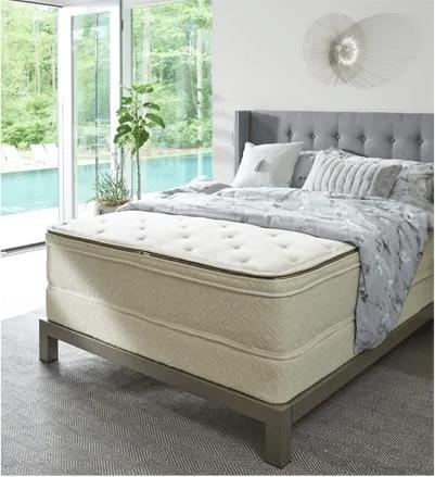 Naturepedic mold resistant mattress