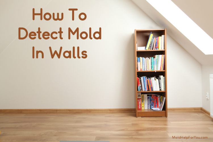 A mold free wall painted beige with a bookshelf in front of it.
